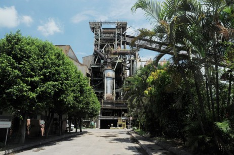 Projeto carvão vegetal