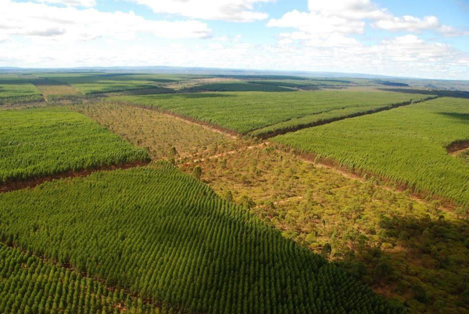 Entenda a influência do aço verde na economia brasileira