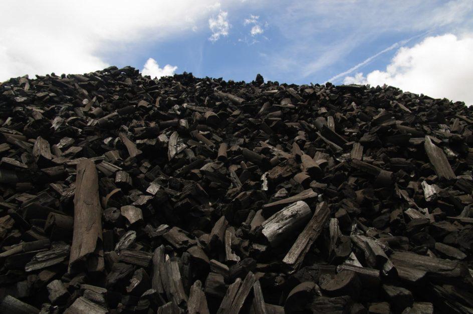 Nascido do carvão vegetal de BioEnergia conheça o aço verde da Aperam