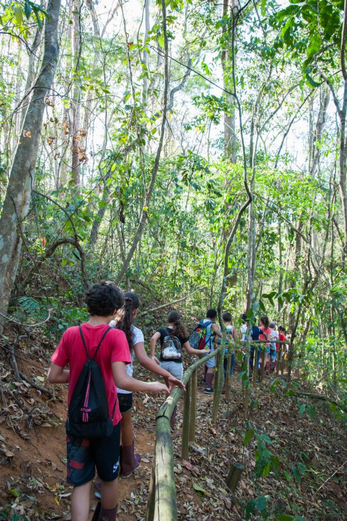 Contato com a natureza pelo percurso da trilha